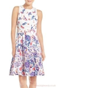 Gorgeous Maggy London Fit and Flare Floral Dress
